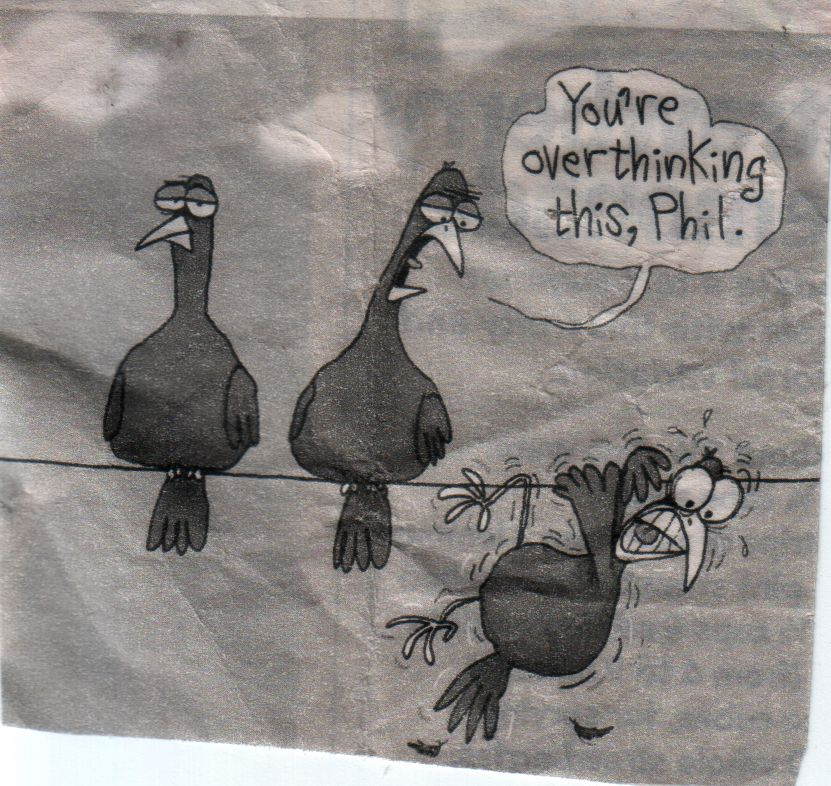 birds on wire: overthinking